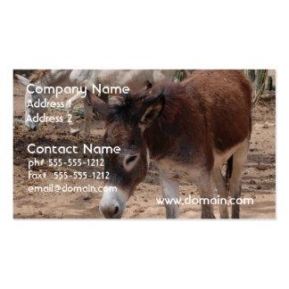 Wild Donkeys Business Card Templates