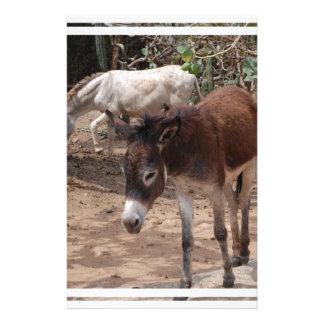 Wild Donkeys Personalized Stationery
