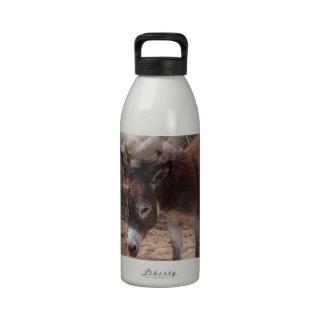 Wild Donkeys Water Bottle