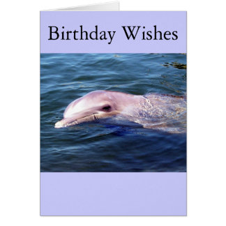 Wild Dophin Greeting Card