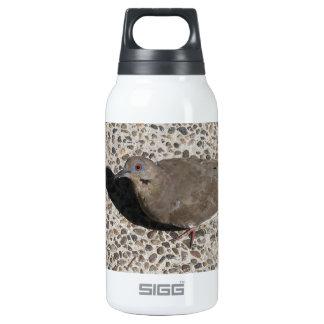 Wild Dove Thermos Bottle
