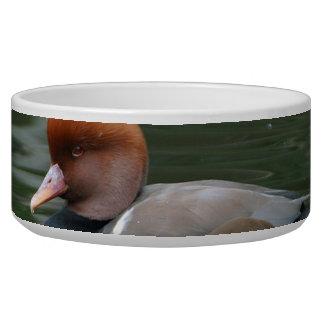 Wild duck bowl