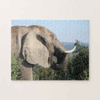 Wild Elephant Eating, South Africa Puzzle