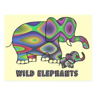 Wild Elephants Post Cards