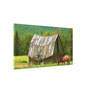 Wild Elk & Old Rustic Barn & Meadow Art Print Stretched Canvas Print