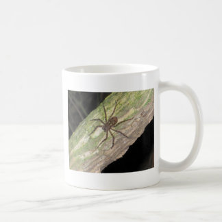 Wild Exotic Spiders, Beetles  and Insects Classic White Coffee Mug