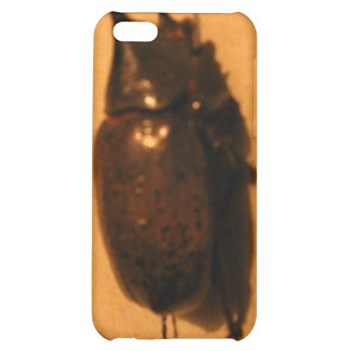 Wild Exotic Spiders, Beetles and Insects iPhone 5C Case