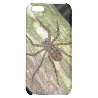Wild Exotic Spiders, Beetles and Insects Case For iPhone 5C
