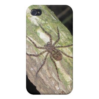 Wild Exotic Spiders, Beetles and Insects iPhone 4/4S Case