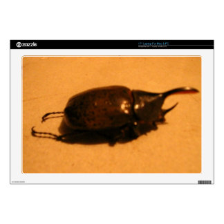 Wild Exotic Spiders, Beetles  and Insects Laptop Decal