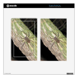 Wild Exotic Spiders, Beetles  and Insects Kindle Fire Skins