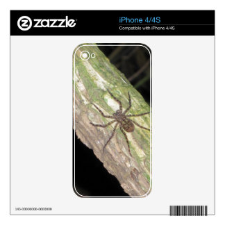 Wild Exotic Spiders, Beetles  and Insects Decal For The iPhone 4S