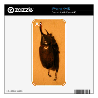 Wild Exotic Spiders, Beetles  and Insects iPhone 4S Decals