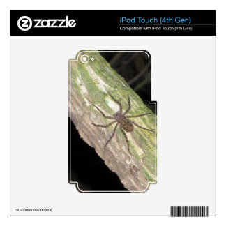 Wild Exotic Spiders, Beetles  and Insects Decal For iPod Touch 4G