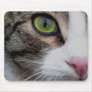 Wild Eyed Cat Mausepad Mouse Pad