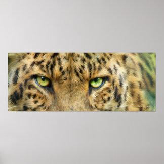 Wild Eyes - Leopard Fine Art Poster/Print Poster