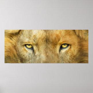 Wild Eyes - Lion Fine Art Poster or Print