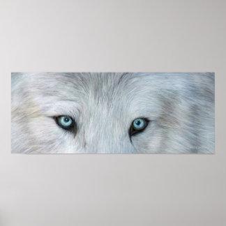 Wild Eyes - White Wolf Eyes Art Poster or Print