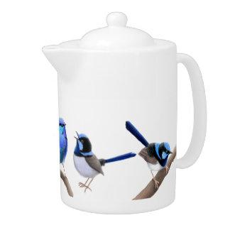 Wild Fairy Wren Birds Teapot