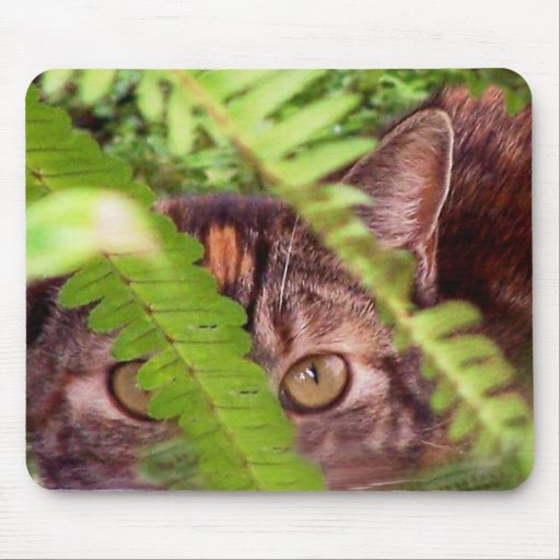 Wild Feral Tabby Cat Mousepad