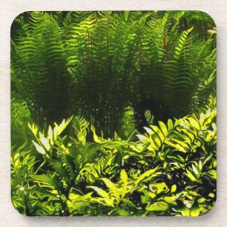 Wild Fern Abstract Cork Coasters