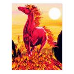 Wild Fire Horse Postcard