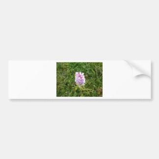 Wild flower 2 bumper sticker