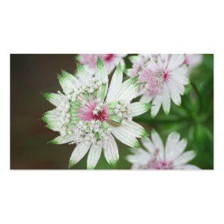 Wild Flower Alps Business Card Templates