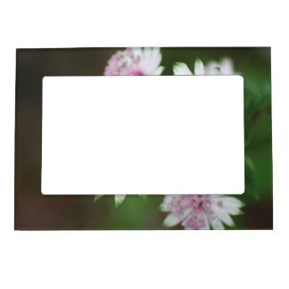 Wild Flower Alps Magnetic Picture Frame
