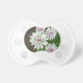 Wild Flower Alps BooginHead Pacifier