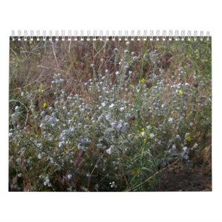 Wild Flower Calendar