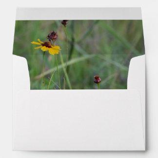 Wild flower field envelope