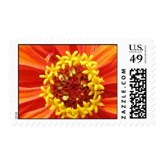 wild flower II Stamps