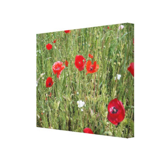 Wild Flowers 2 Canvas Print