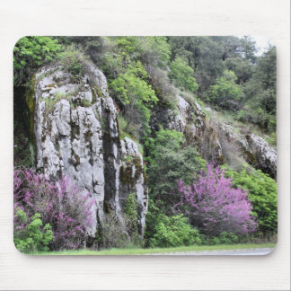 Wild Flowers and Rocks - Mouse Pad