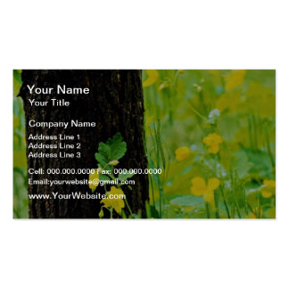 Wild flowers and tree Sherbrooke Quebec Canada Business Card Template