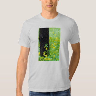 Wild flowers and tree, Sherbrooke, Quebec, Canada Tee Shirt