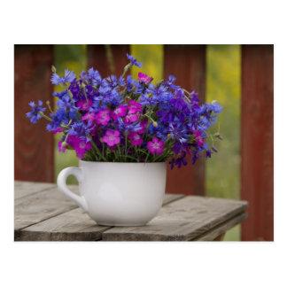 wild flowers, carnation and cornflower postcard