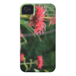 Wild Flowers Case-Mate iPhone 4 Cases
