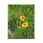 Wild Flowers Gallery Wrap Canvas