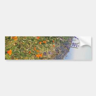 Wild flowers in the sun bumper stickers
