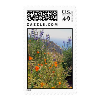 Wild flowers in the sun stamps