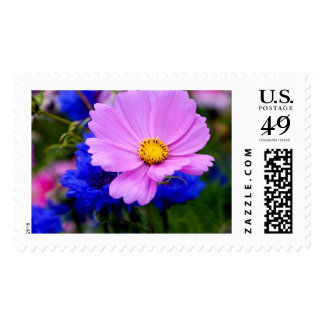 Wild Flowers Large Stamps