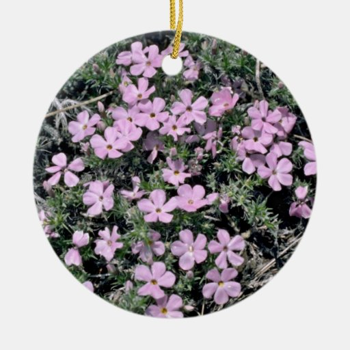 Wild flowers on Half Dome Trail Pink flowers Christmas Tree Ornaments
