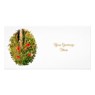 WILD FLOWERS PICTURE CARD