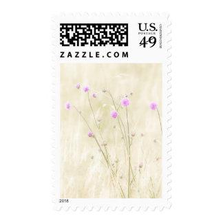 Wild Flowers Postage Stamp