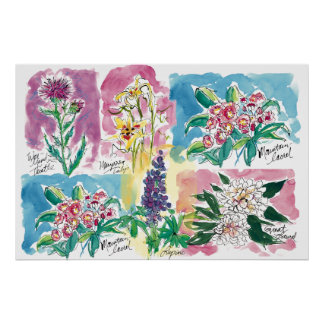 Wild Flowers-poster Poster