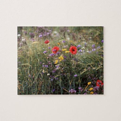 Wild flowers puzzle