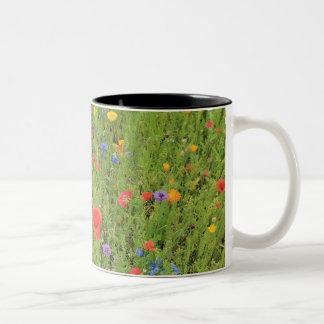 Wild flowers Spring Photo Two-Tone Mug