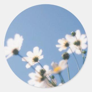 Wild Flowers with Blue Sky Classic Round Sticker